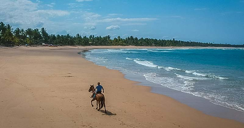 Horseriding at beach